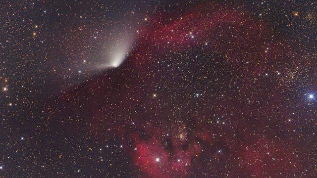 Komet C/2011 L4 (PANSTARRS) und NGC 7822/Ced 214