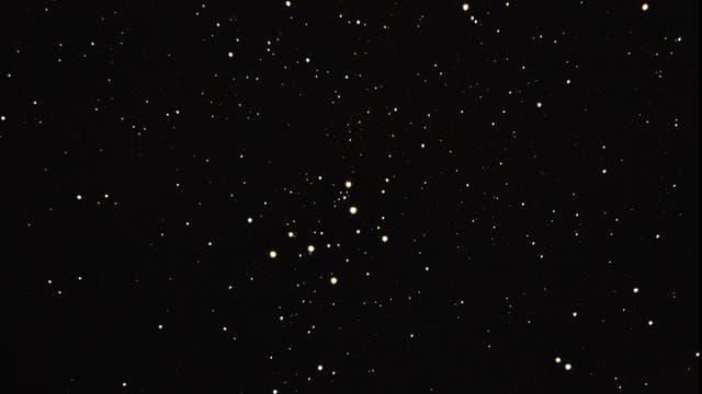 offener Sternhaufen; M29