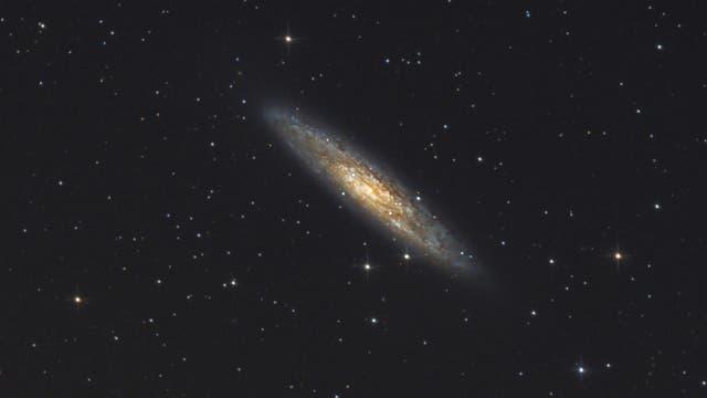 NGC 253 Sculptorgalaxie