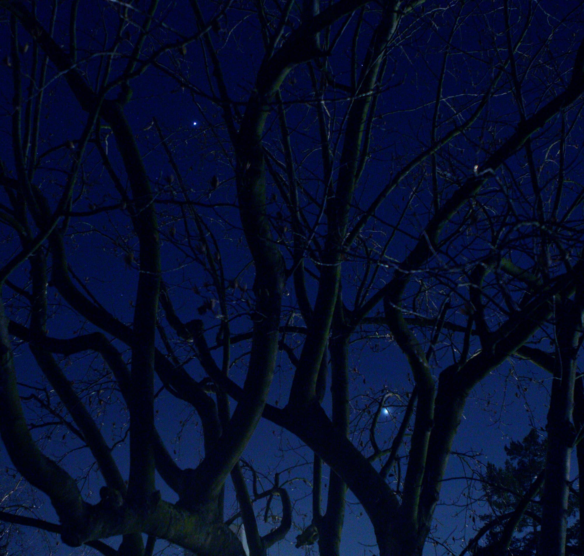 Ein Monat mit Venus, Jupiter und Mond – Bild 1