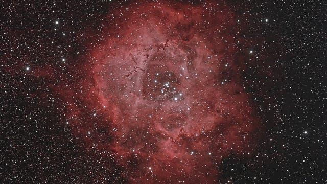 Rosettennebel mit NGC 2244