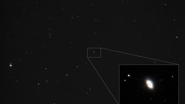 Supernova in NGC 3655