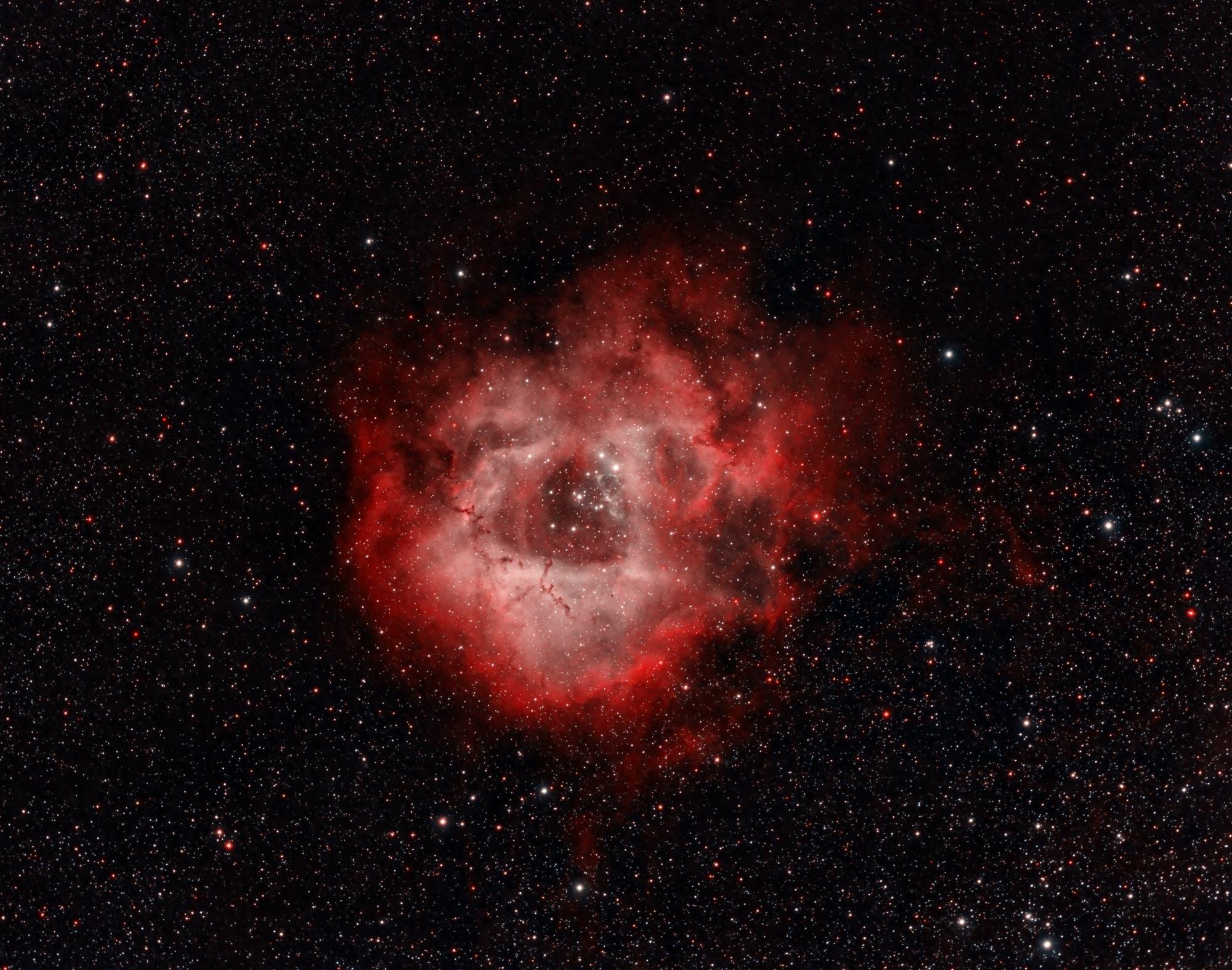 Der Rosettennebel mit dem Sternhaufen NGC 2244