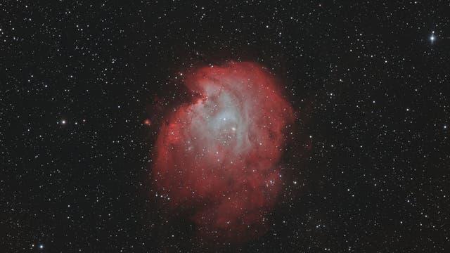 Affenkopf im Orion