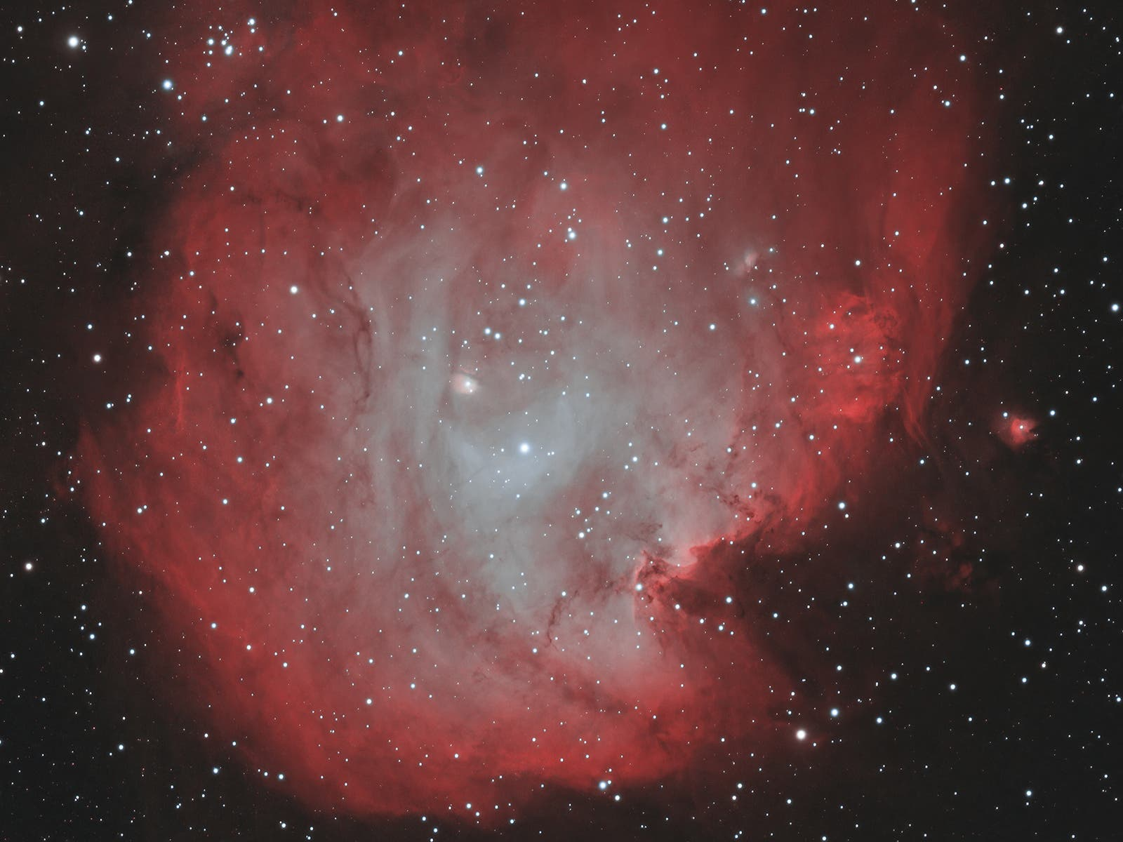 NGC 2175 im Affenkopfnebel