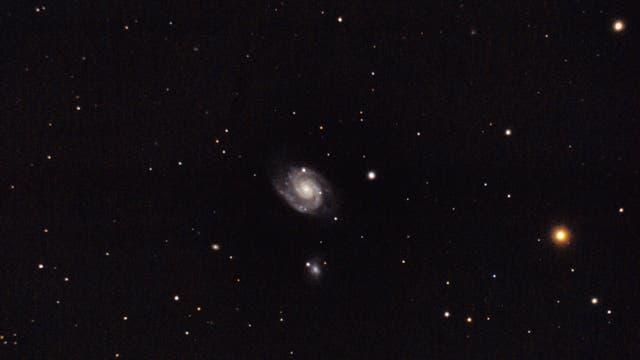 NGC 3893