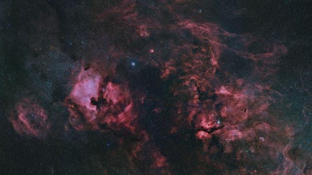 Der Große Riss in Sternbild Schwan