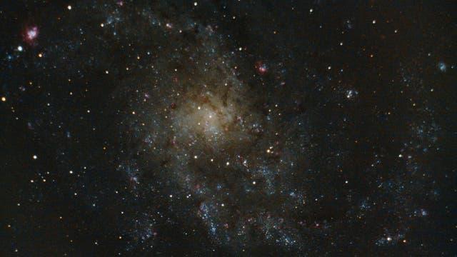 Messier 33 / NGC 589 Triangulumgalaxie