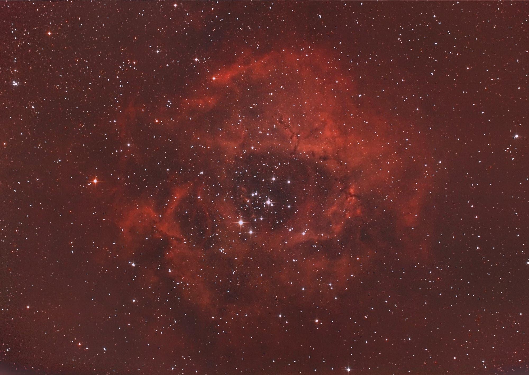 Rosettennebel NGC 2237 mit offenem Sternhaufen NGC 2244 im Sternbild Einhorn (Monoceros)