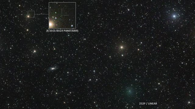 Two sibling comets approaching to Earth