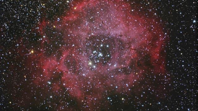 NGC 2238 - Rosettennebel