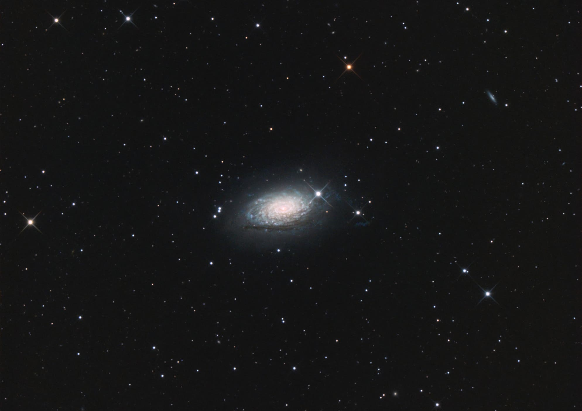 M 63 Sonnenblumengalaxie