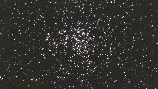 Messier 37 - offener Sternhaufen im Fuhrmann