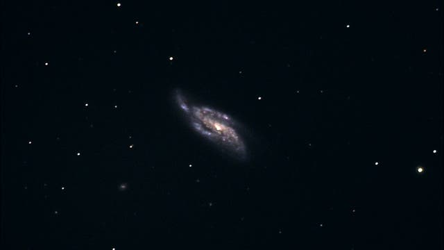 Supernova in NGC 4088