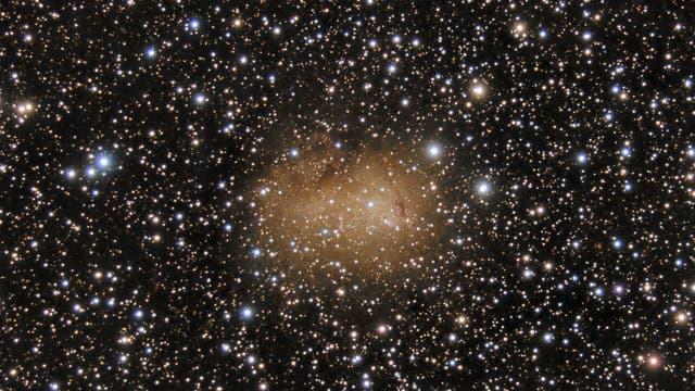 IC 10 - Irreguläre Galaxie
