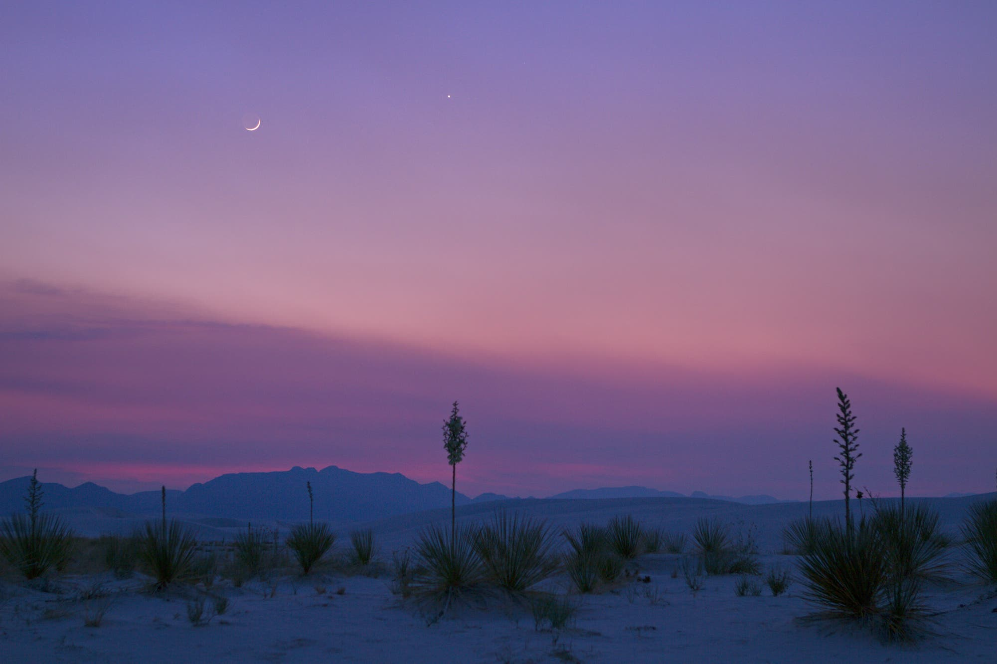 Aschfahles Mondlicht mit Venus über White Sands