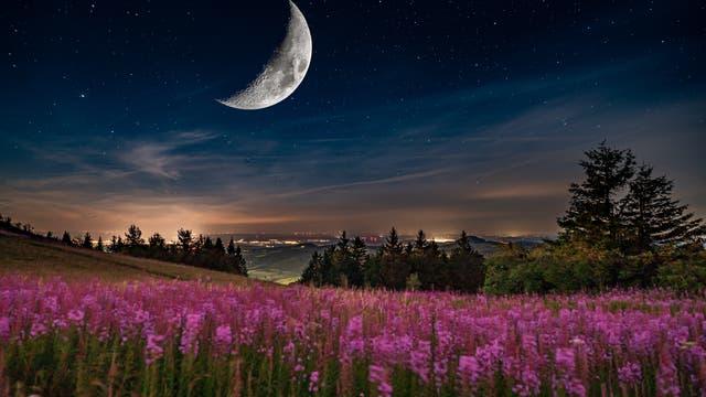 Wasserkuppe im Mondlicht