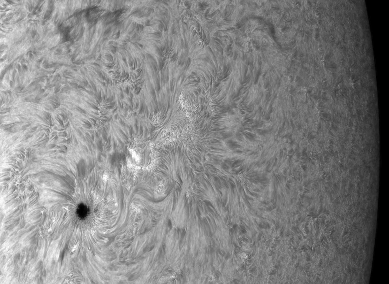 Sonnenfleck und aktive Region in H-alpha