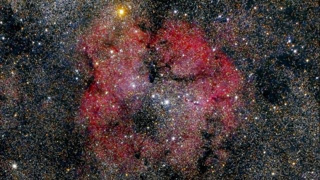 IC 1396 und Herschels Granatstern
