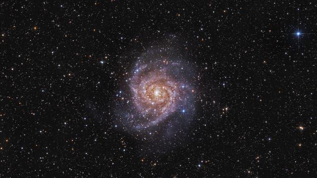 IC 342, die verborgene Galaxie