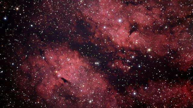 Gamma-Cygni-Nebel