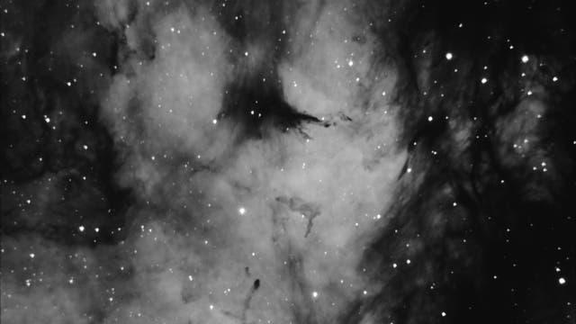 IC 1318 – Gamma-Cygni-Nebula