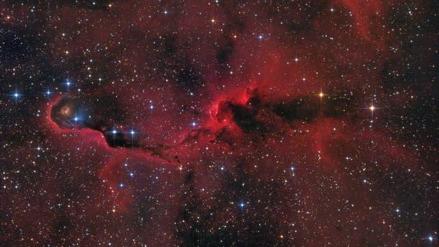 IC 1396A - Elefantenrüsselnebel