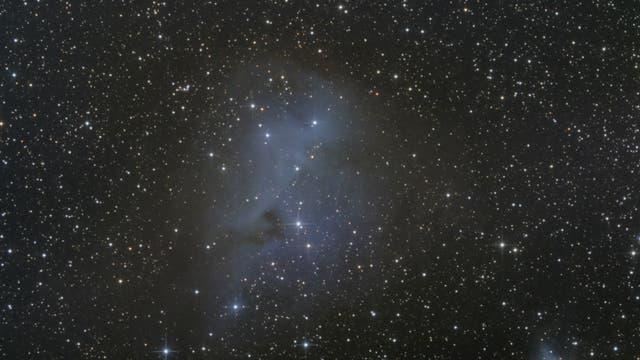 IC 2169 - Reflexionsnebel