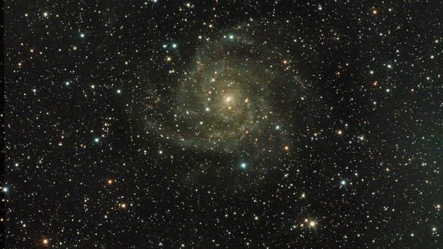IC 342, The Hidden Galaxy