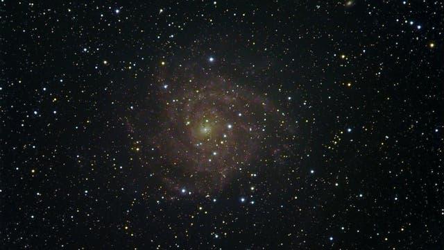 IC 342, eine wunderschöne Galaxie in der Giraffe
