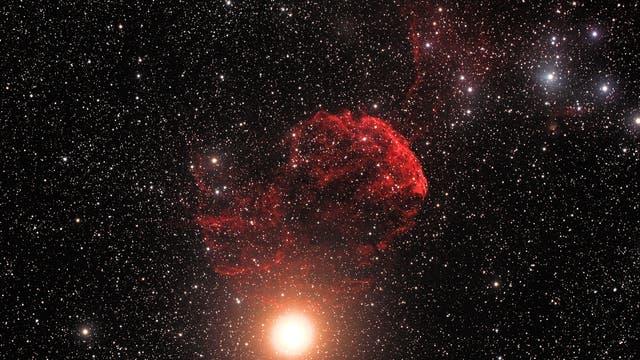 IC443 Medusa Nebel