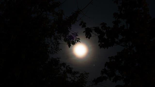 Mond und Jupiter bei 55 mm