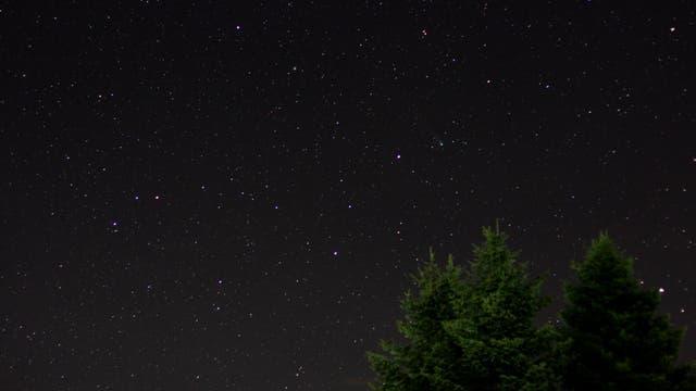 Komet Lovejoy im Herkules