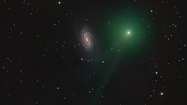 Komet C/2018 Y1 (Iwamoto) bei NGC 2903