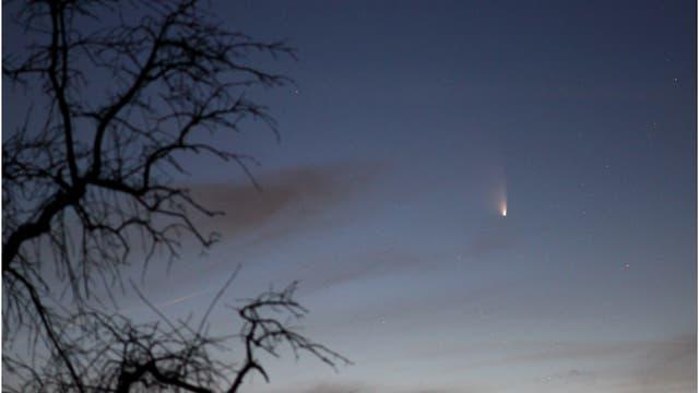 Komet PANSTARRS am 19.3.2013