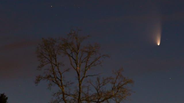 Komet PANSTARRS vom 19.03.2013