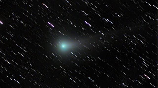 Komet Lovejoy C/2013 R1