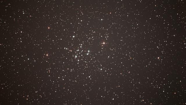 offener Sternhaufen M 34 im Sternbild Perseus