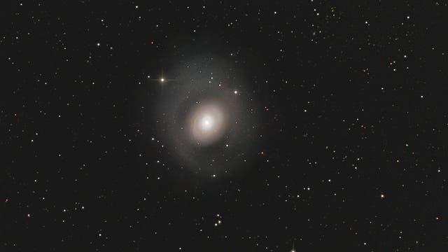 Messier 94 oder endlich wieder mal mein 8-Zöller