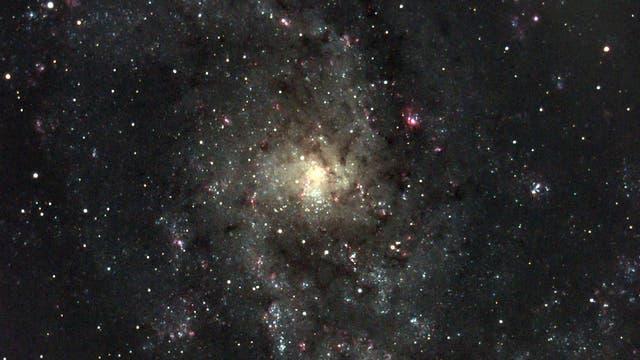 M 33 Triangulum-Galaxie