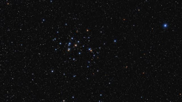 Messier 44 - Praesepe