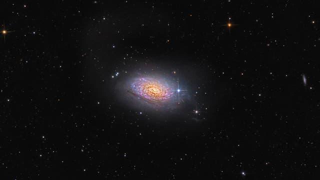 Sonnenblumen-Galaxie, Messier 63