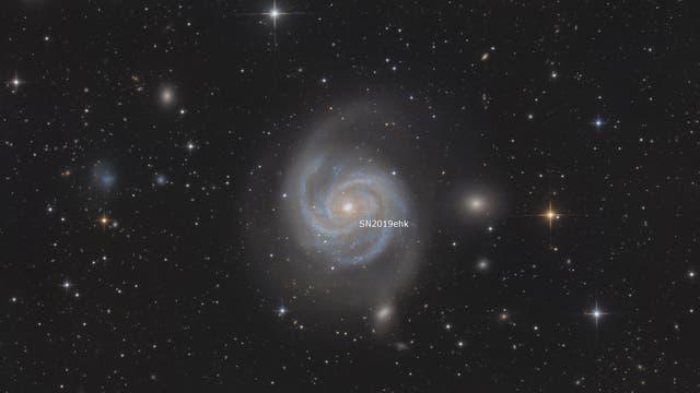 Messier 100 mit Supernova SN2019ehk