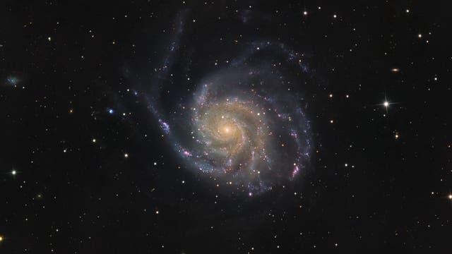 M 101 Pinwheel-Galaxy