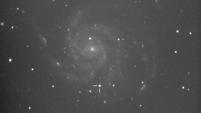 SN2011fe, Supernova in M101