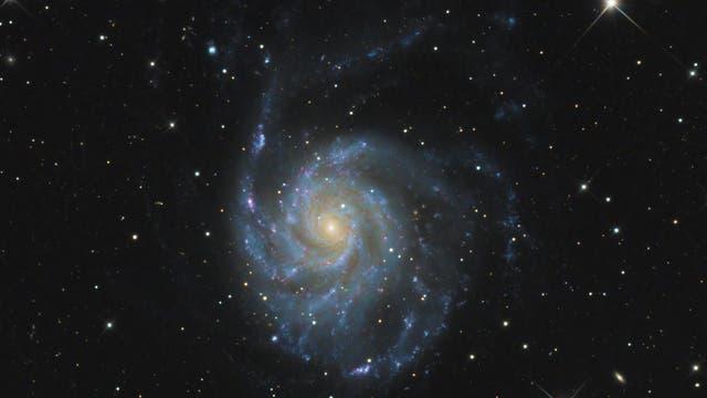 M 101 - Pinwheel Galaxie