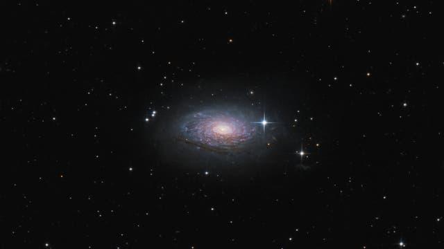 Messier 63 - Sonnenblumen-Galaxie