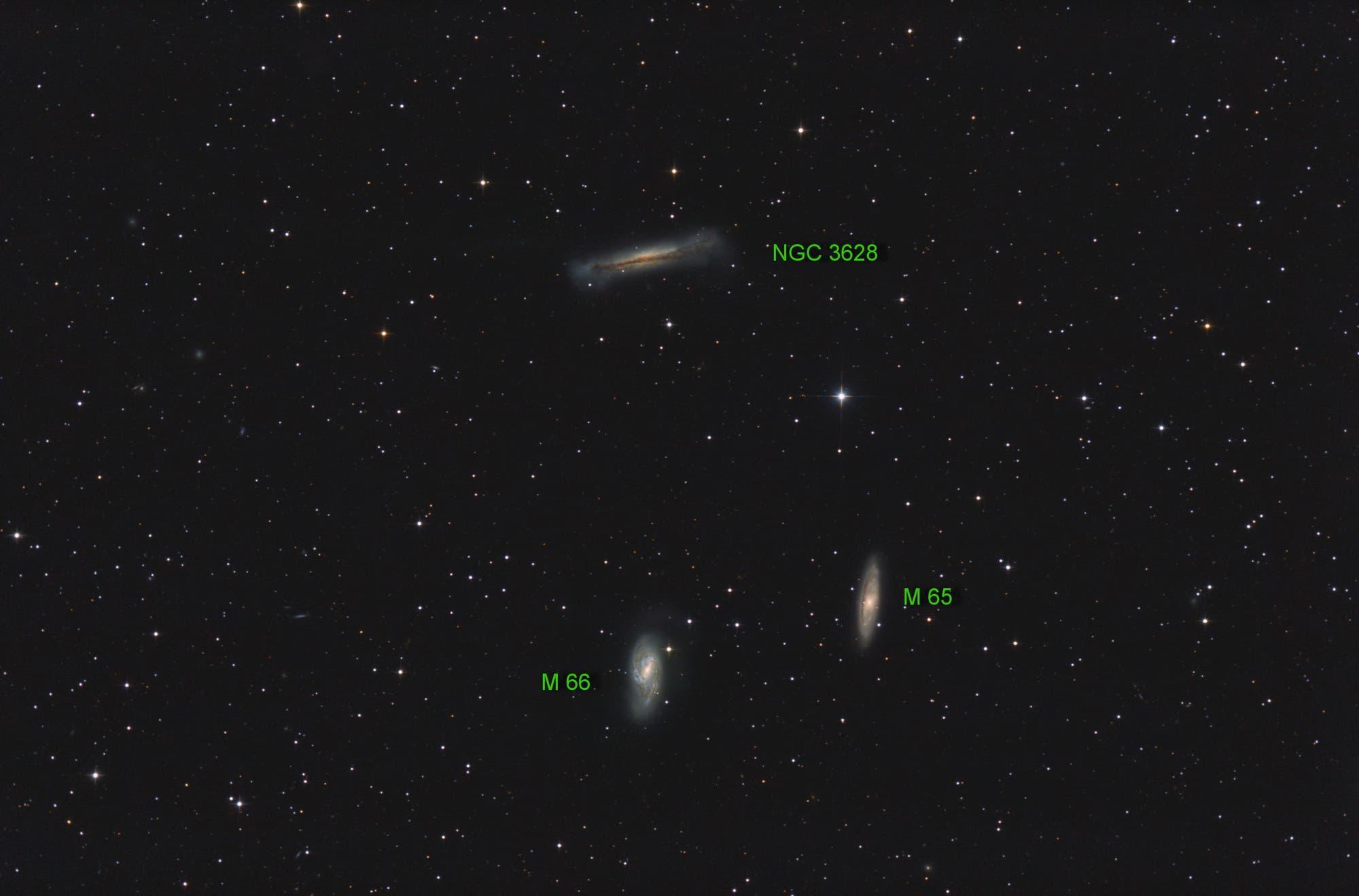 M65, M66 und NGC 3628 (Objekte)