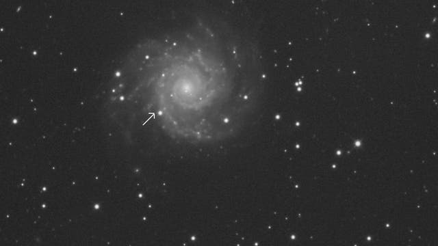 SN 2013ej in M74
