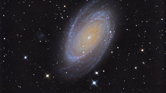M 81 - Bodes Galaxie